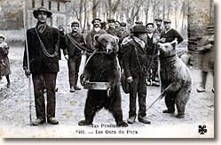 """L'image """"http://www.carte-postale.com/themes/images/pyreneesmontreurdours.jpg"""" ne peut être affichée car elle contient des erreurs."""